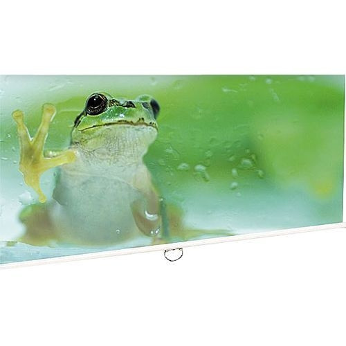 Euroscreen Connect C2017-W Manual Projection Screen - 16:9 - Ceiling Mount, Wall Mount