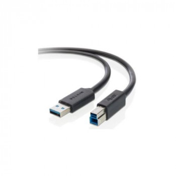 Belkin F3U159B06 USB Data Transfer Cable - 1.83 m - Shielding