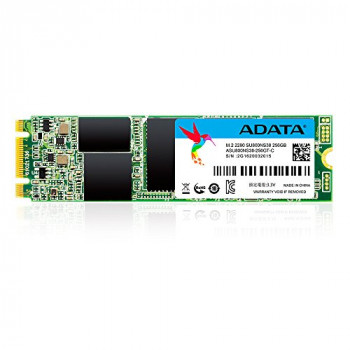ADATA SU800 M.2 2280 256GB 3D-NAND 200TB TBW 560MB/s Read and 520MB/s Write High Speed Solid State Drive, for ultrabooks , notebooks , and desktop (ASU800NS38-256GT-C)